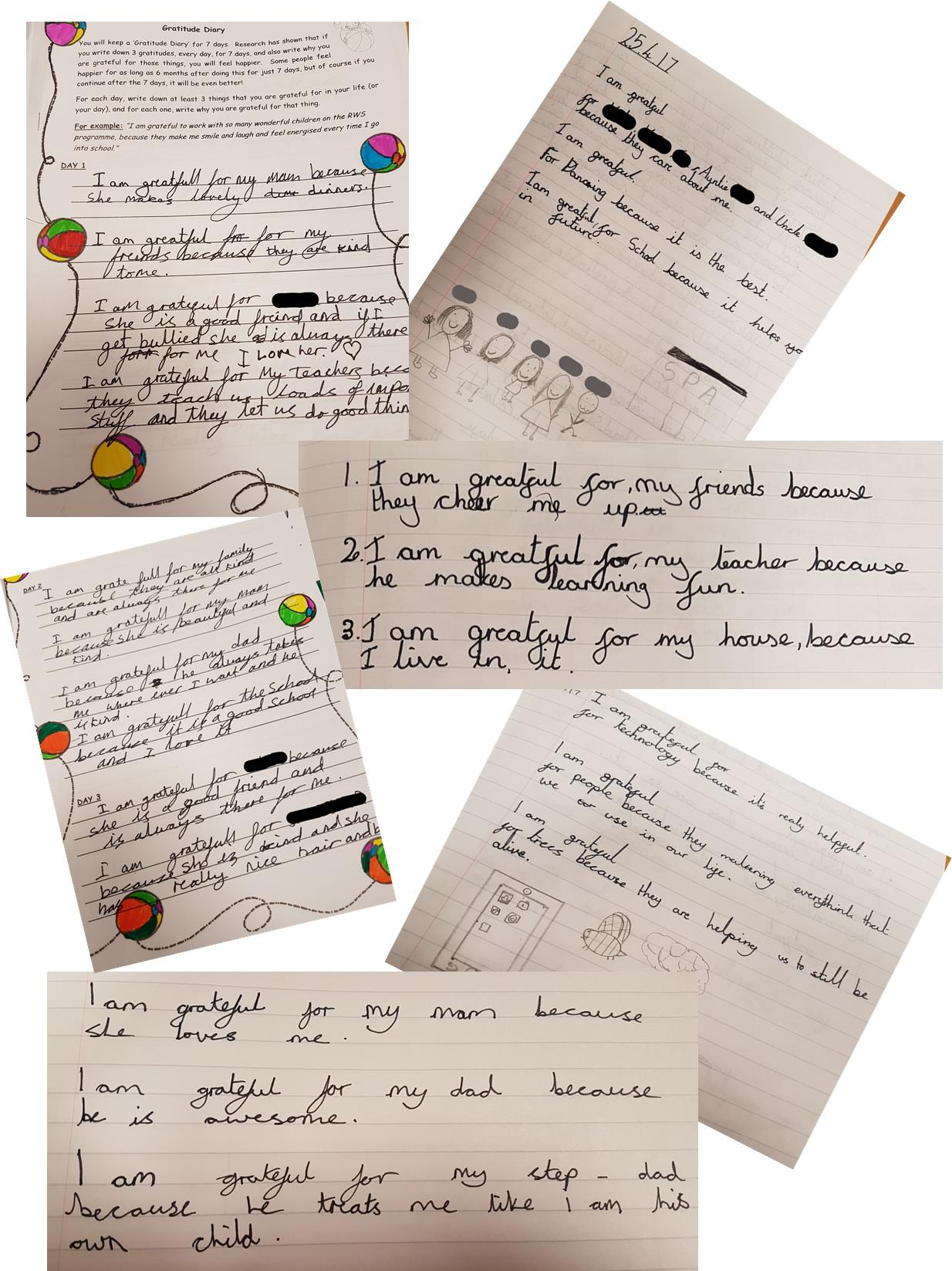 Gratitude Diary Entry Examples